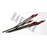 Excalibur Arrows  Diablo 18""