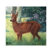 Animal Face Deer