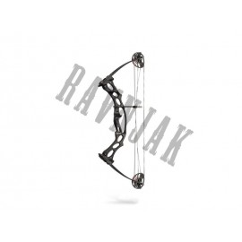 HOYT FIRESHOT