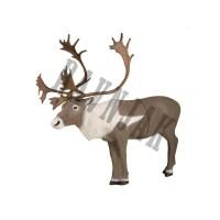 Makete živali(3D)